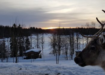 schweden sonnenaufgang