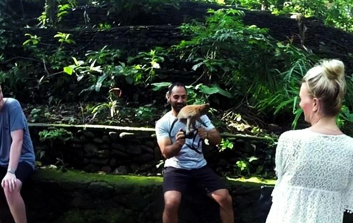 Tourist und Affe auf seiner Kamera