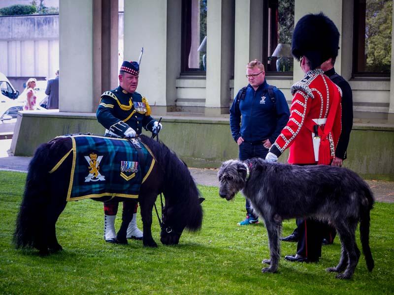 Am Buckingham Palace